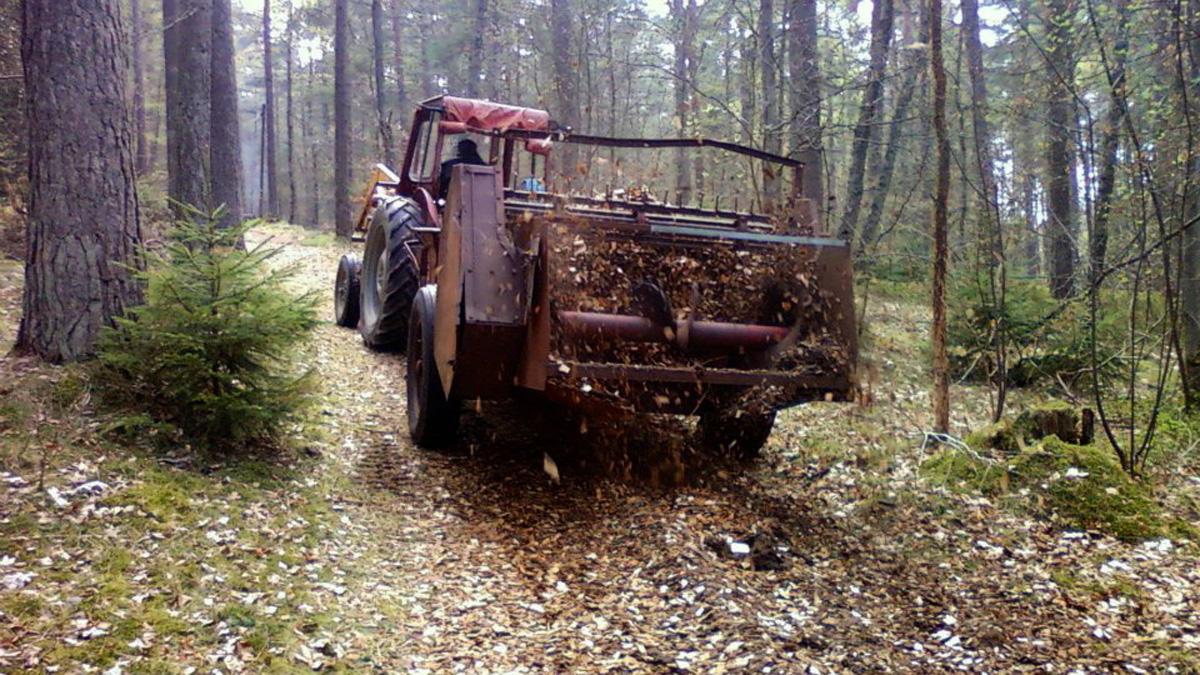 Med ideella krafter och sponsring från Jan Johanssons Skogstransporter spred vi ekflis och glädje längs elljusspåret.