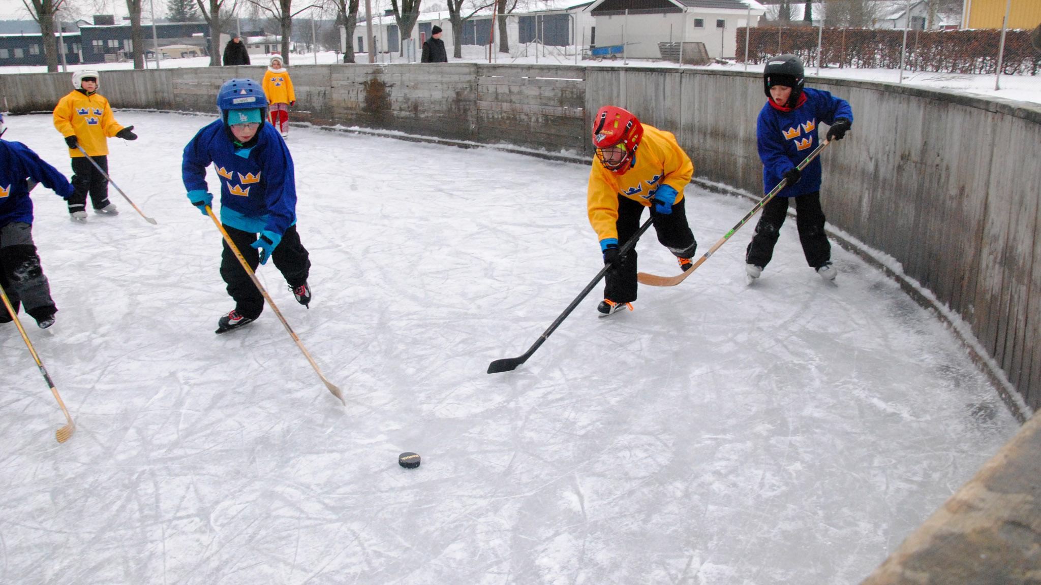 Tillsammans med Svenska ishockeyförbundet och Brösarps IF hölls Tre Kronors hockeyskola för flickor och pojkar i åldrarna 6–12 år.
