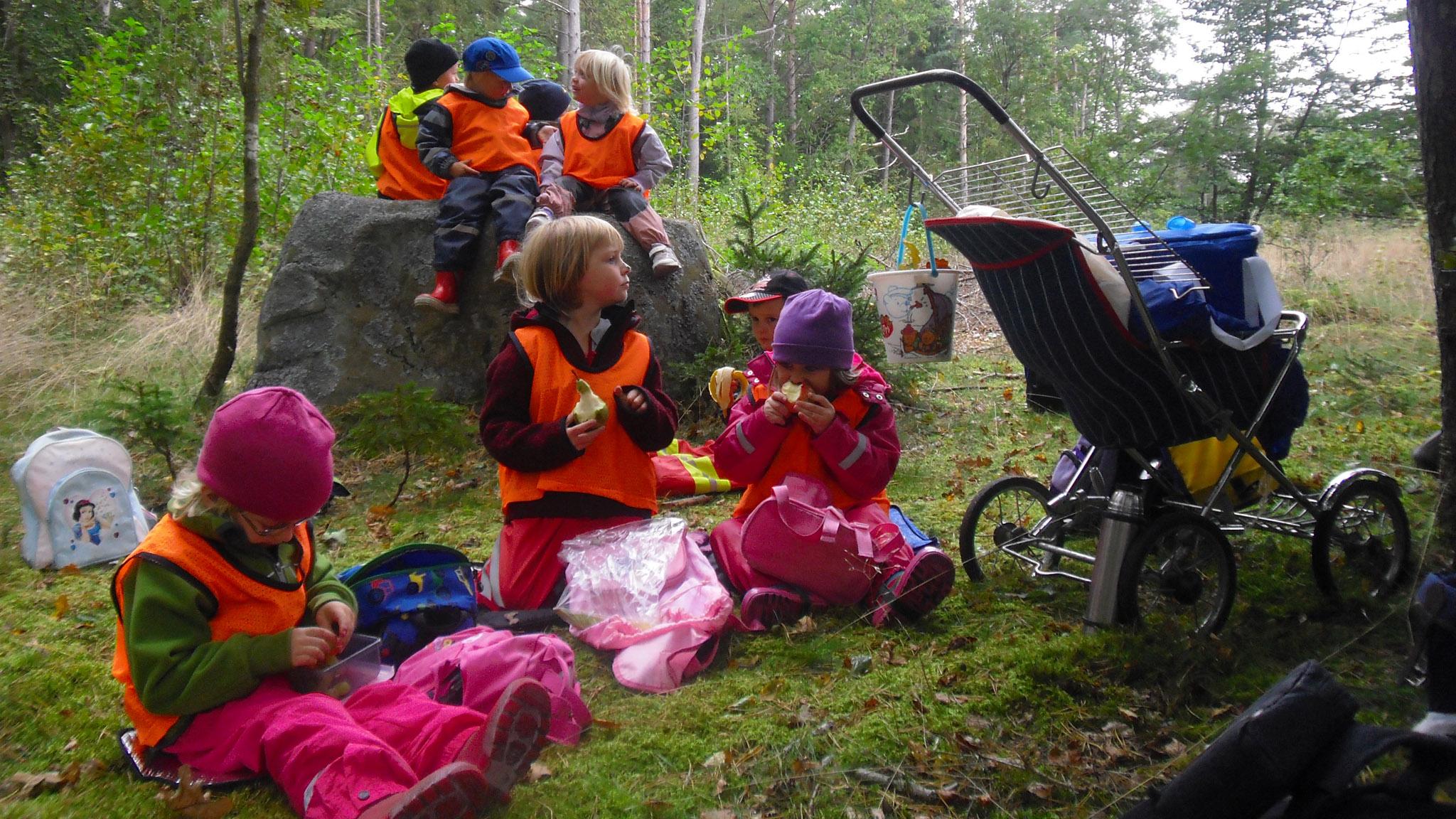 Hela Utsiktens förskola konverterades till I Ur och Skur och alla pedagogerna och barnskötarna har tagit IUS-examen. Tomelilla kommun har varit lyhörda och barn och föräldrar tackar och tar emot.