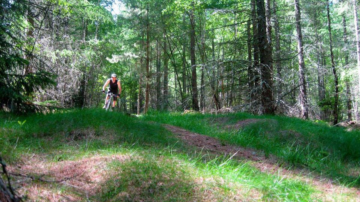Upplev Österlen på cykel! Det varierade och vackra landskapet runt Brösarp inbjuder till cykling i alla dess former, från svettig landsvägscykling och MTB till pittoreska cykelutflykter.