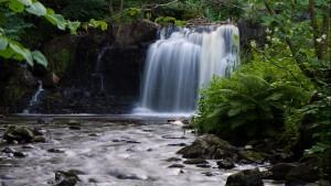 Kvarn, vattenfall och vandring @ Hallamölla kvarn | Ludaröd | Skåne län | Sverige