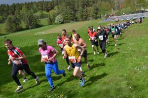 Gullviveloppet @ Brösarps skola med AIF | Skåne län | Sverige
