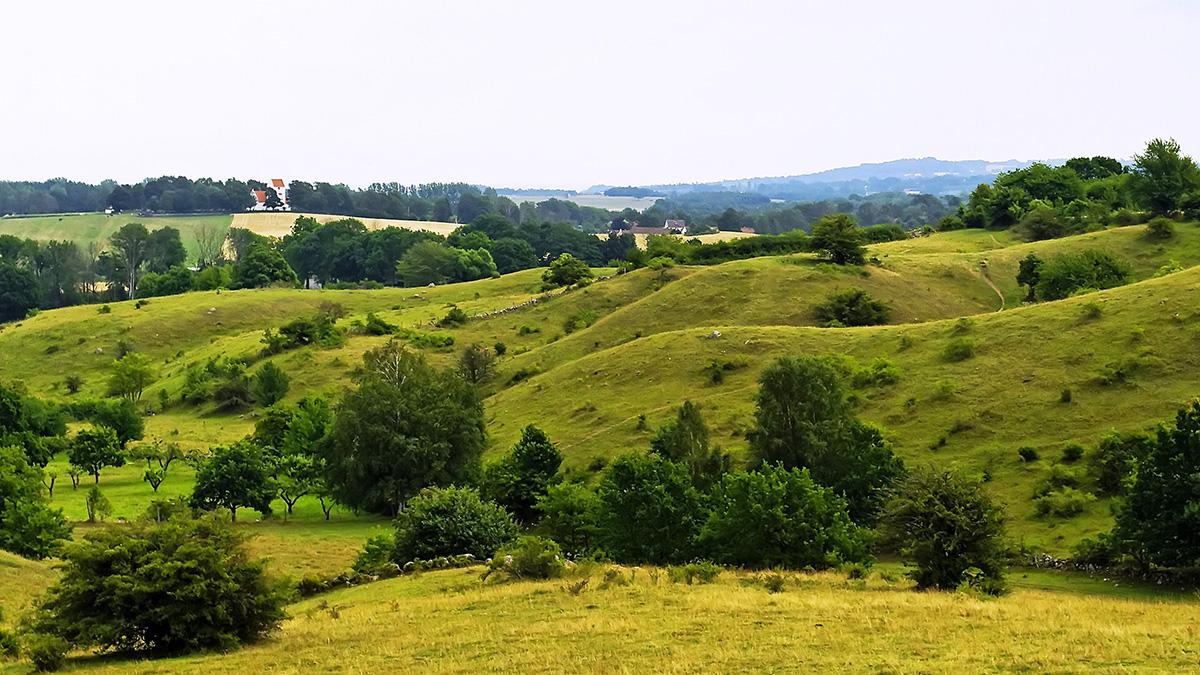 Historisk vandring genom skog och hagar