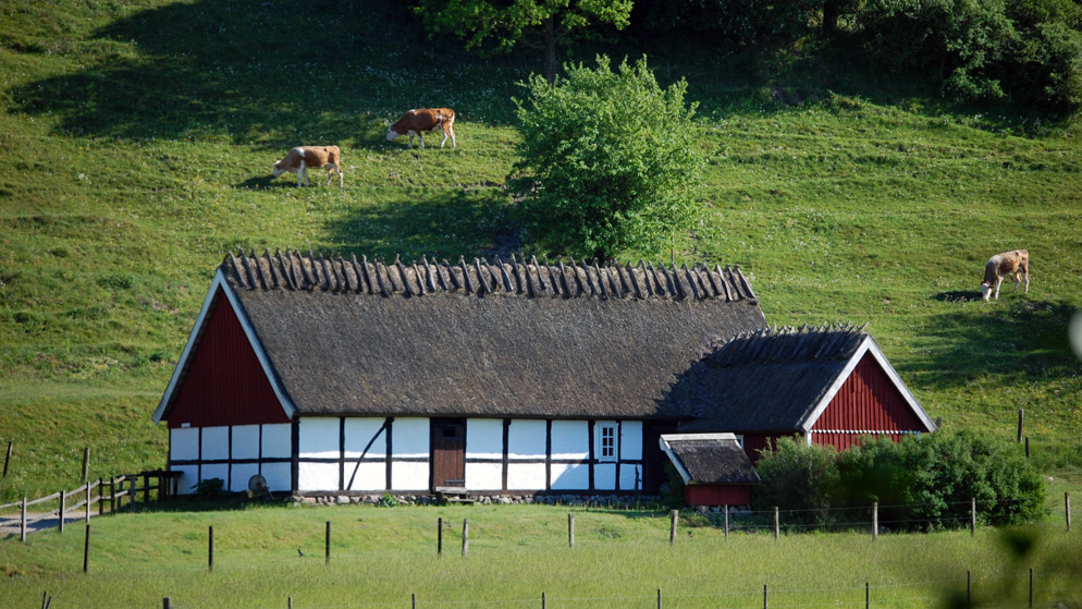Lindgrens länga är ett utemuseum över traktens natur och kultur. Foto Leif Lindholm, STF Haväng Skepparpsgården