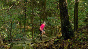Österlen Trail Run @ Öståkra | Skåne län | Sverige