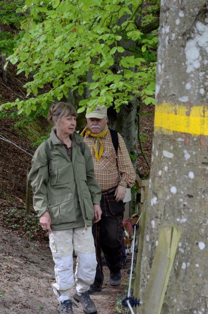 Ledmarkeringarna är nymålade och nu är det lätt att hitta vägen. Foto: Hanseric Jonsgården