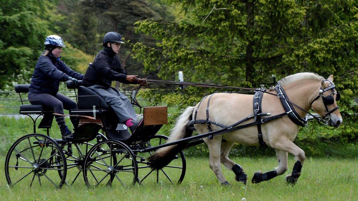 """Ellinor Persson från Onslunda kör hästen Vessmer och med finns också """"burkslav"""" Marina Nelin. Foto: Hanseric Jonsgården"""