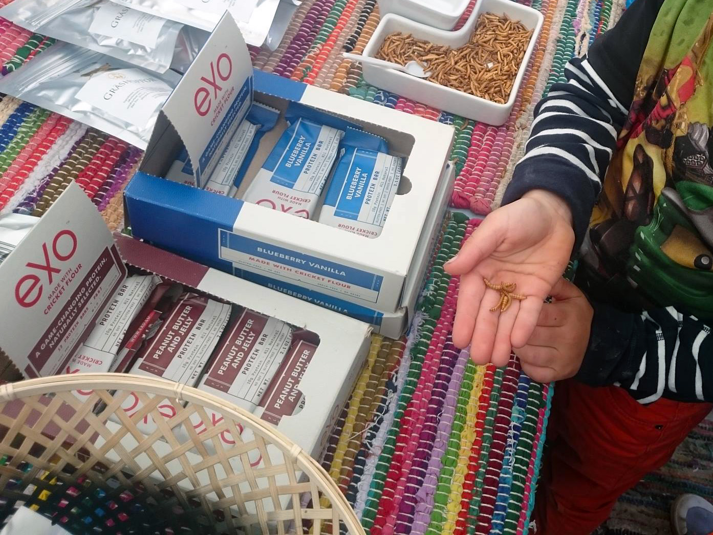 På Hakuna Mat bjöds det på mjölmaskar, gräshoppor, skorpionstjärtar och andra proteinrika insekter.