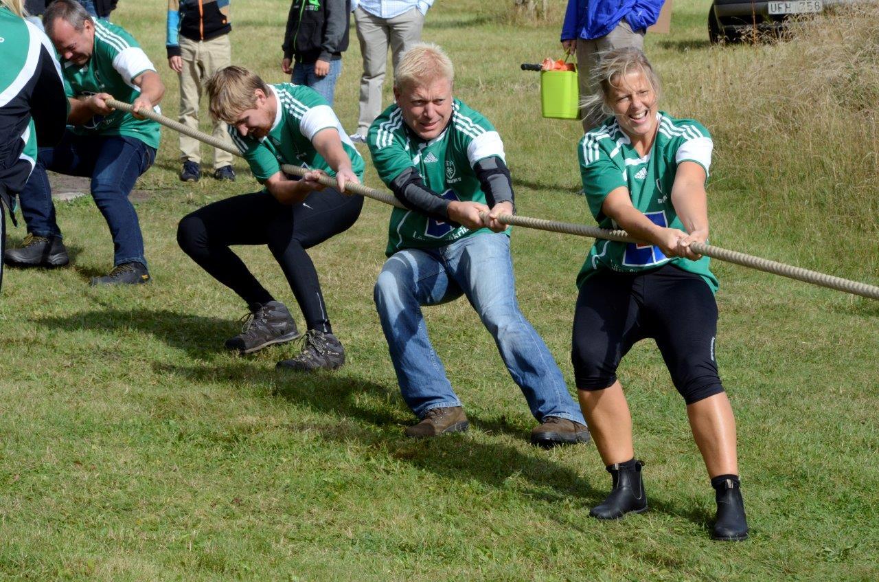 Brösarp slutade på bronsplats 2015. Foto: Hanseric Jonsgården