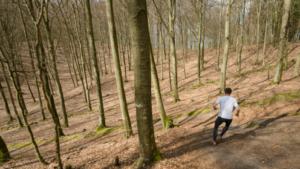 Österlen Spring Trail @ Christinehofs Ekopark | Skåne län | Sverige