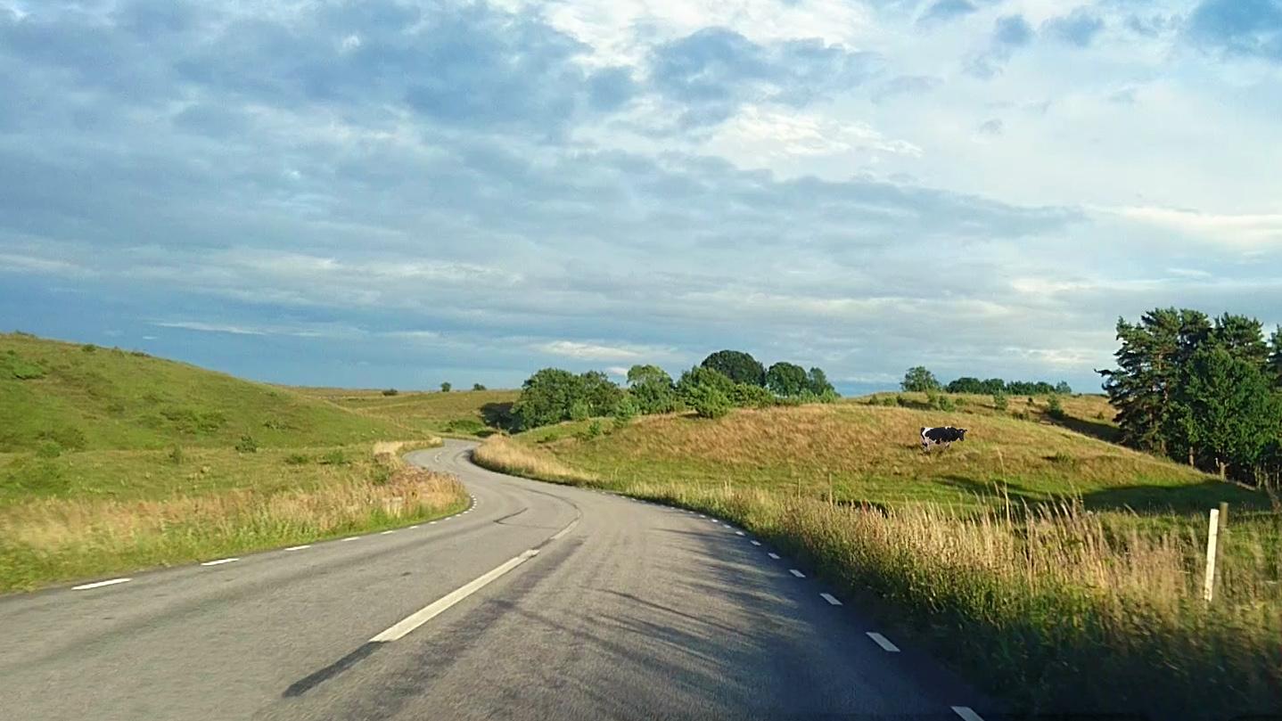 Riksväg 9 genom Brösarps backar röstades 2012 fram till Sveriges vackraste väg.