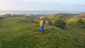 Utsikt över Brösarps norra backar från Glimmebodaleden. En 5 km blå rundvandring genom skog, hedar och böljande backar.