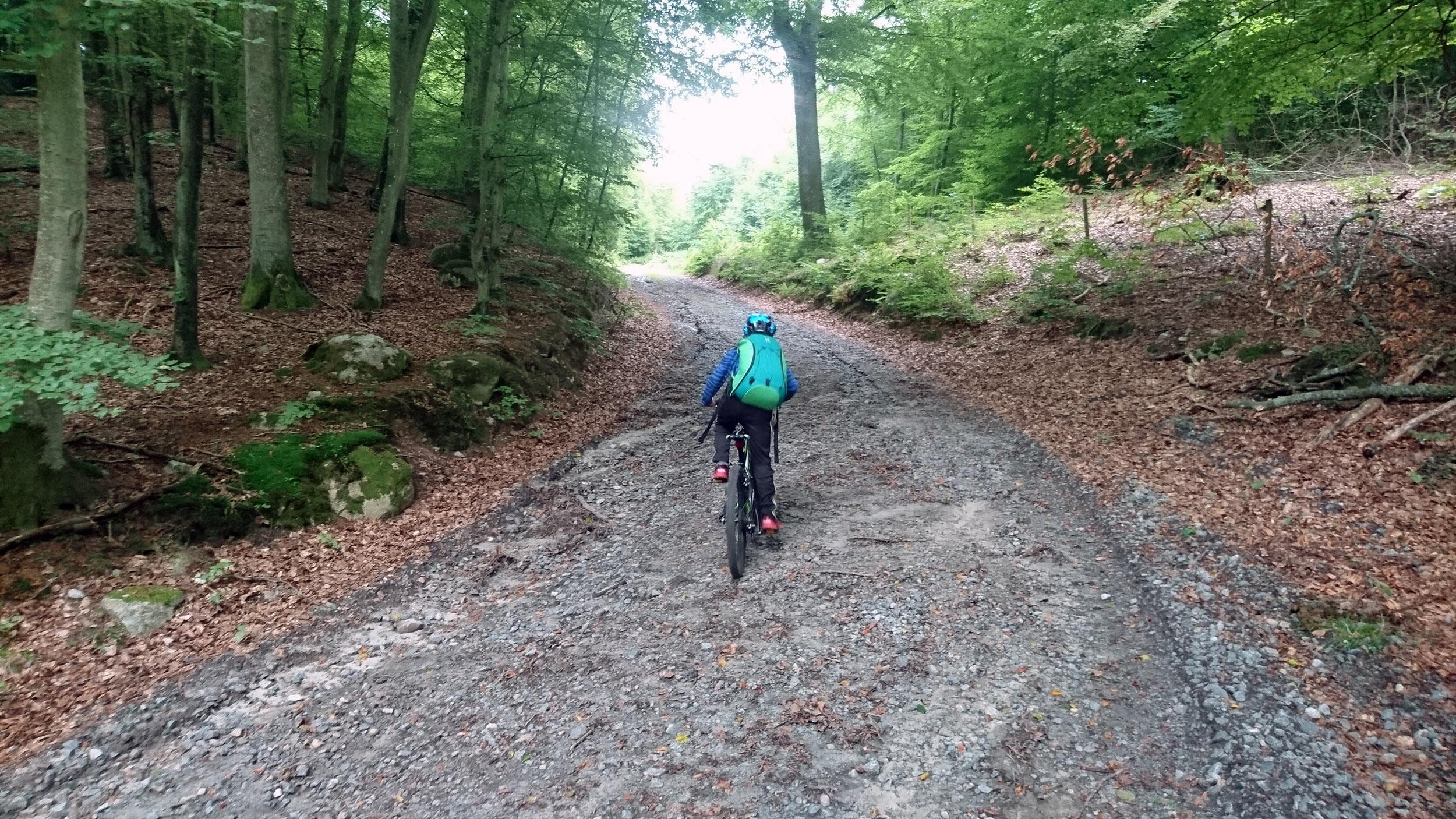 Vi tar genvägen genom skogen förbi handgranatsbanan.