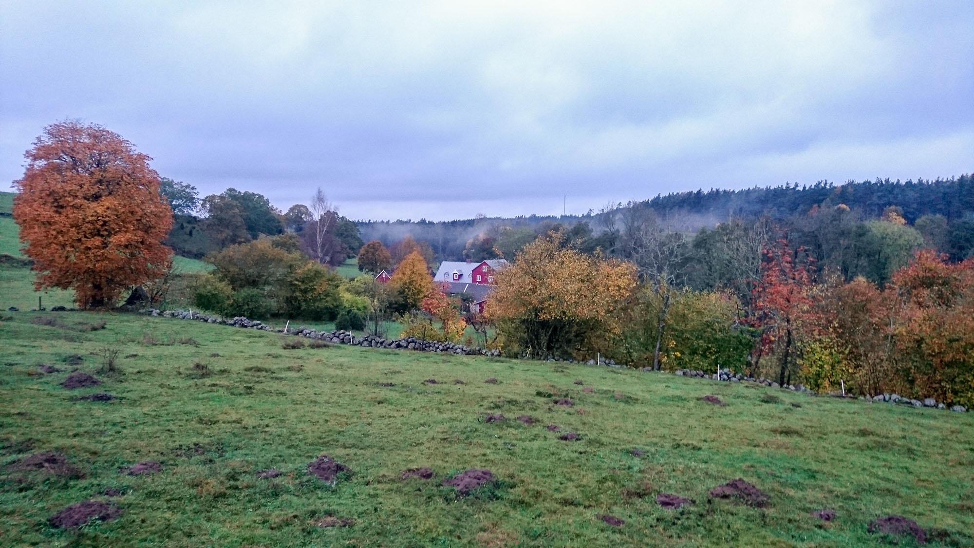 Kungsmölle är en av två välbevarade kvarnar längs Backaleden och Skåneleden.