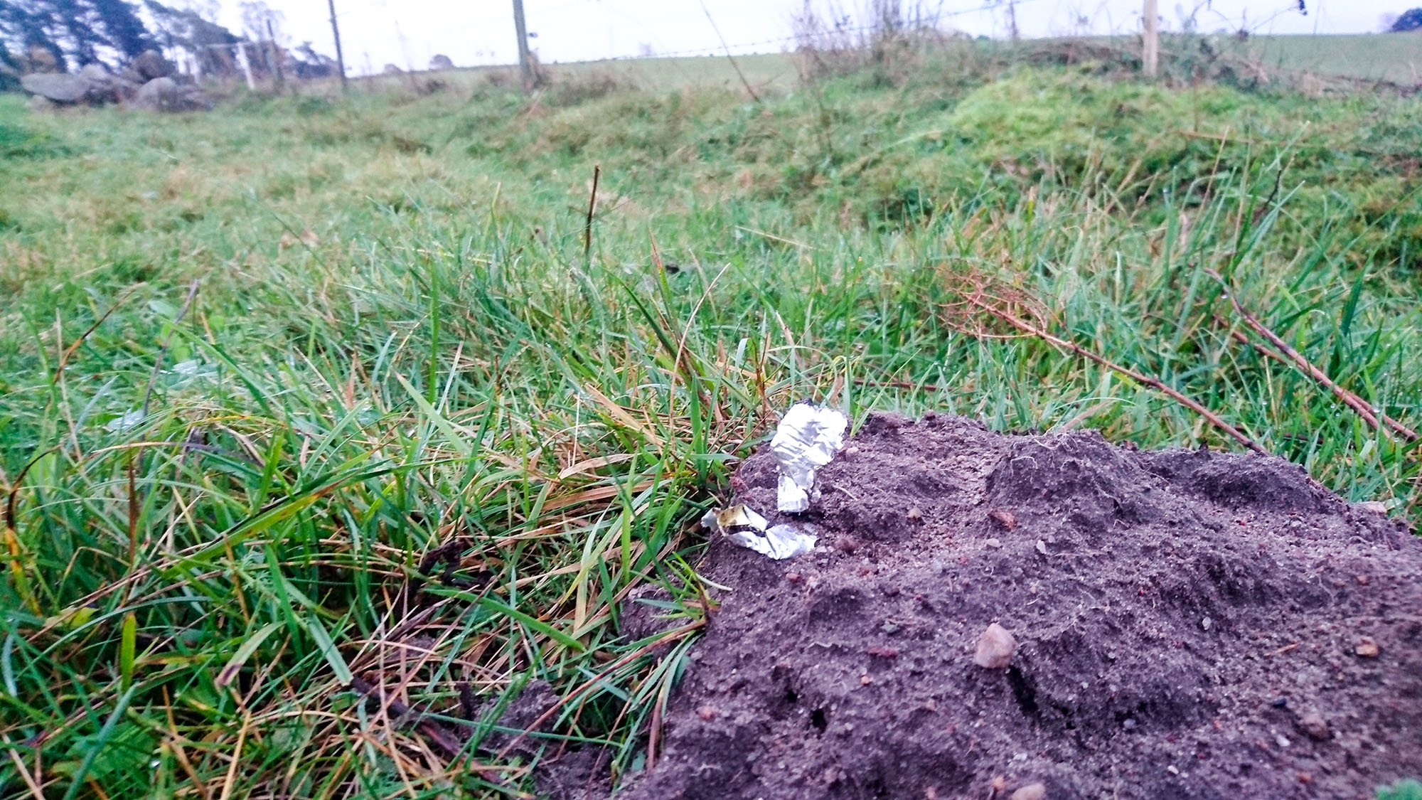 Första skräpet hittade jag i en mullvadshög.