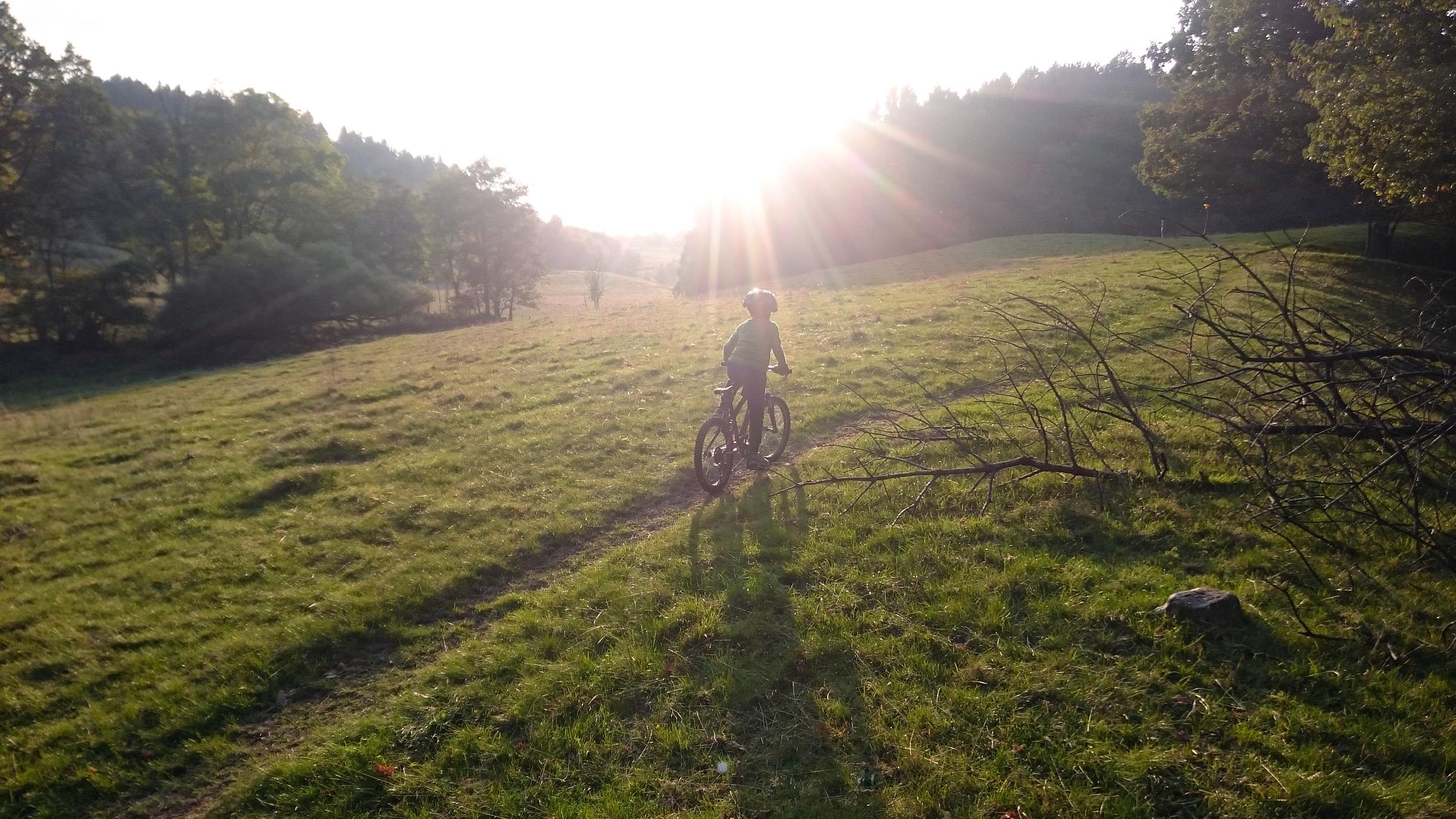 MTB på Backaleden i solnedgången.