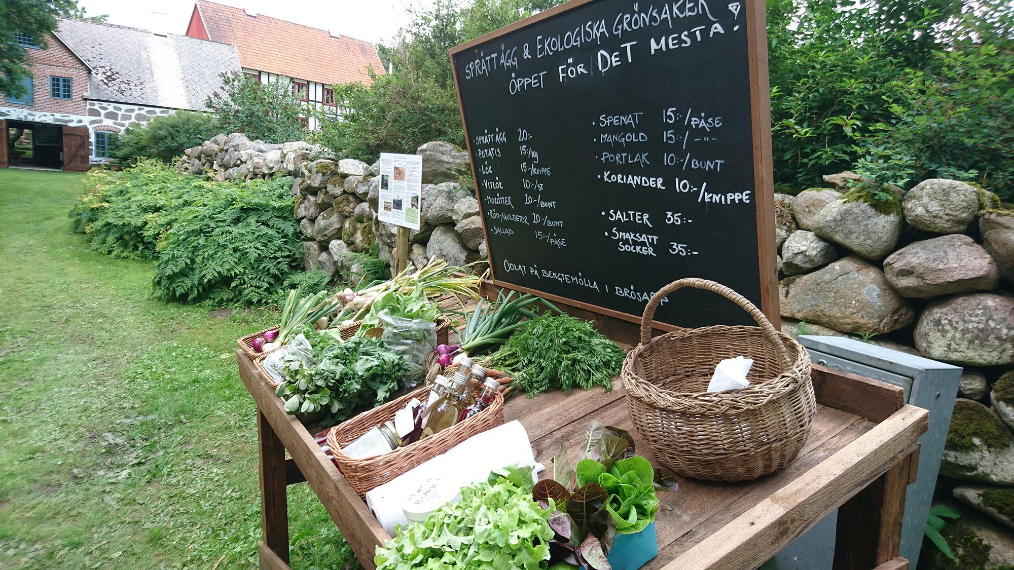 Det är Ola Johnsson och Annika Ståhle som odlar grönsakerna och rotfrukterna som finns i den lilla gårdsbutiken på Bengtemölla.