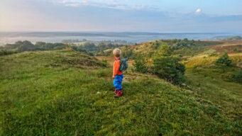 Utsikten från Brösarps norra backar är lika storslagen som hänförande.
