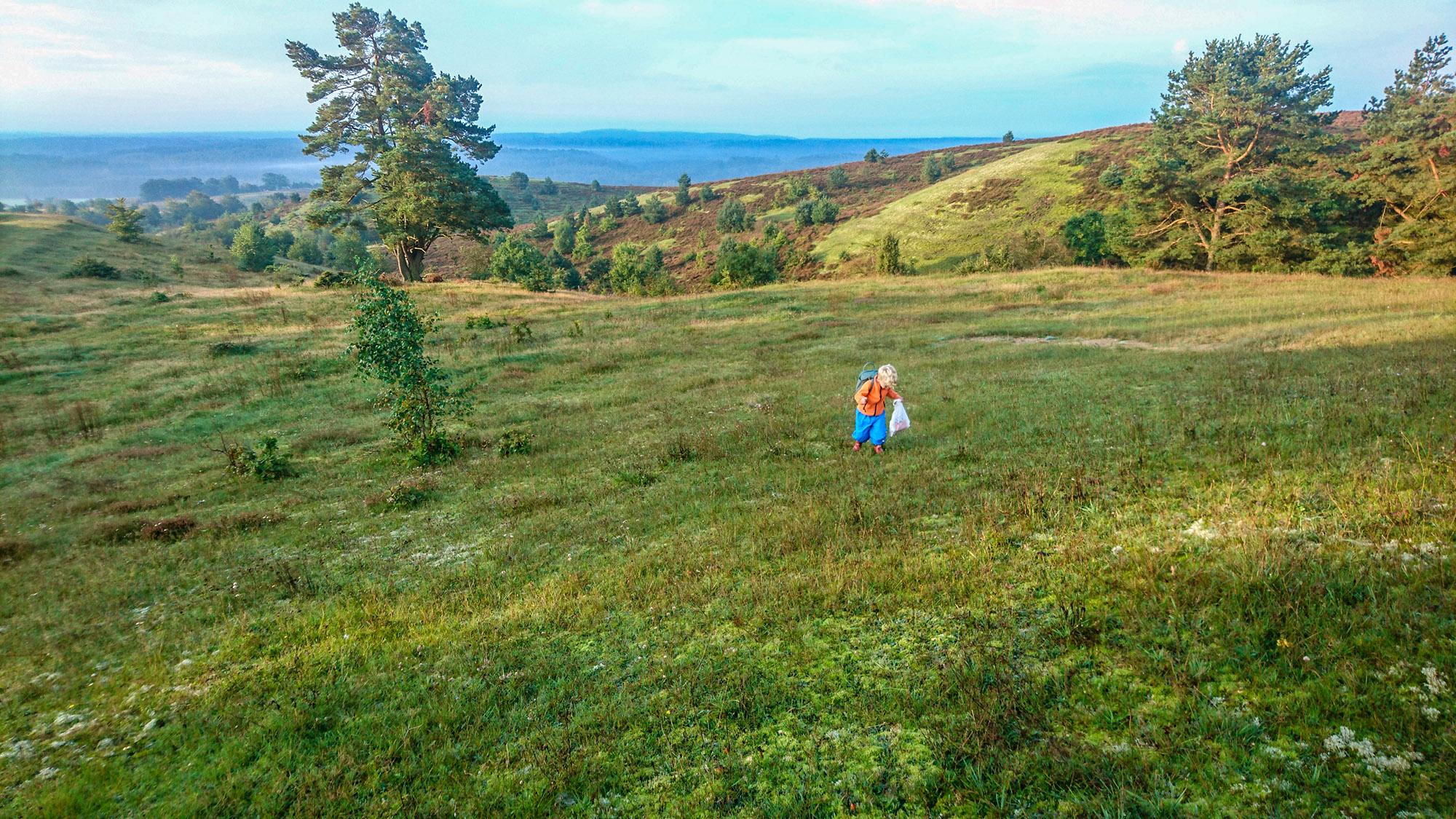 Utsikten är flera mil från toppen av Brösarps backar.
