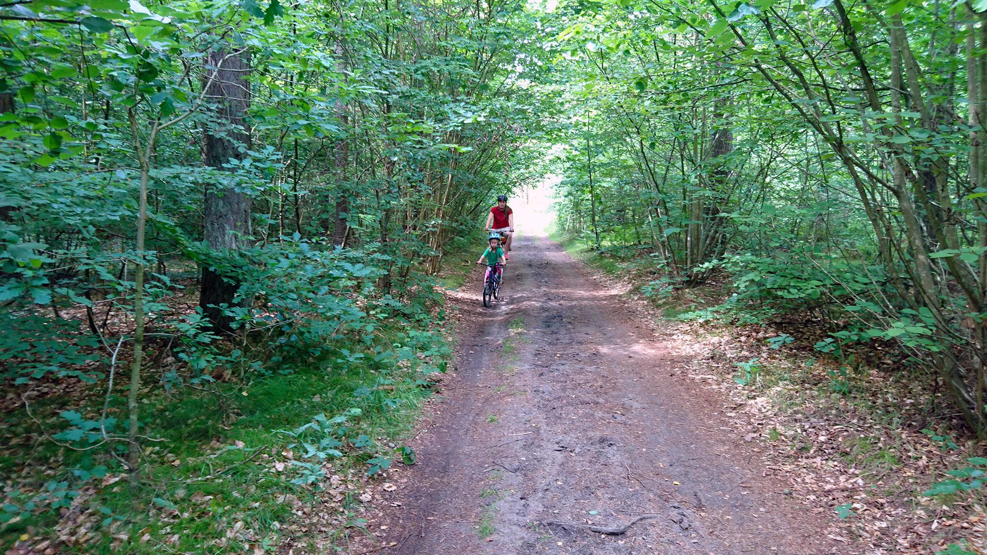 Närmaste vägen till Skepparp är den gamla grusvägenförbi Bengtemölla och Bosarp.